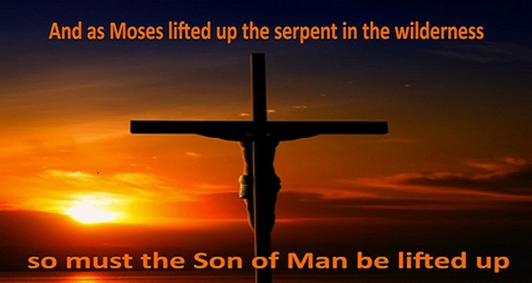 Image result for Son of man must be lifted up